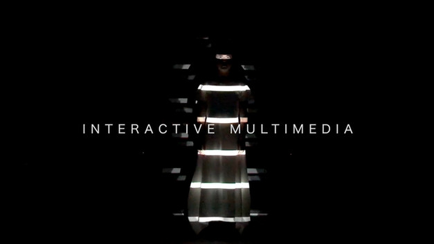 interactive multimedia projects
