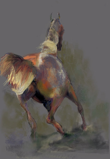 Horse 1 limited edition fine art print