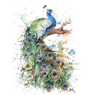 watercolor peacock painting.JPG