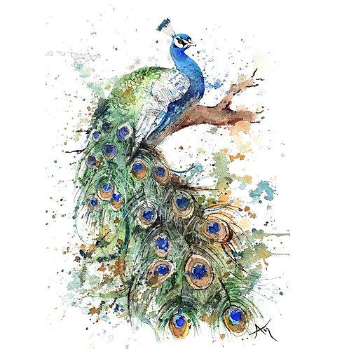Peacock - Original Painting