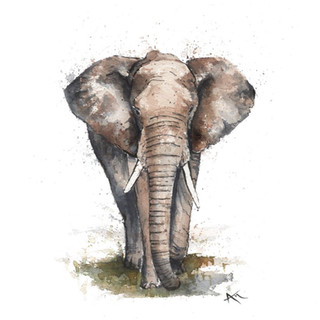 elephant watercolor painting.jpg