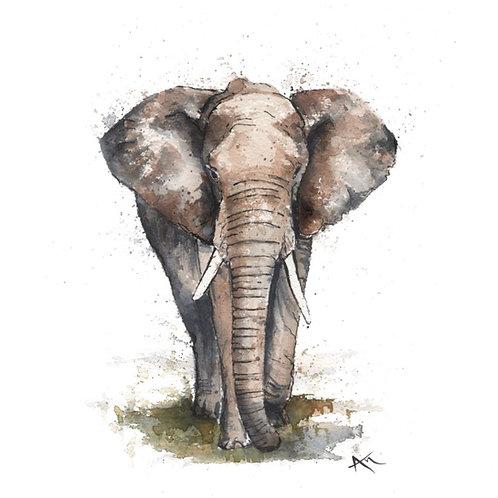 Elephant - Original Painting