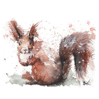 watercolor squirrel wall art.jpg