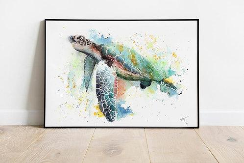 Sea turtle - Art Print