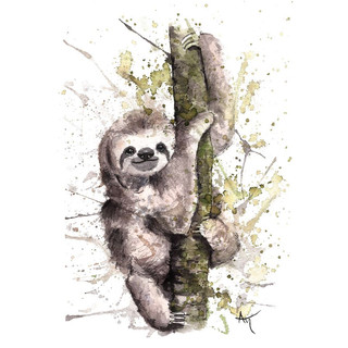 watercolor sloth art print.JPG