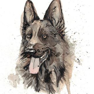 german shepherd watercolor.JPG