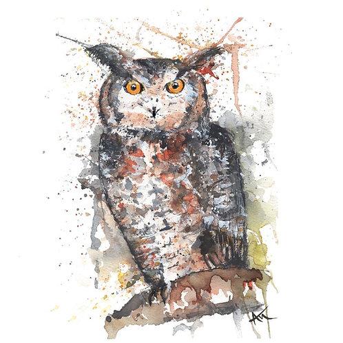 Owl - Original Painting