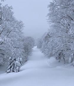 ak-winter-wonderland