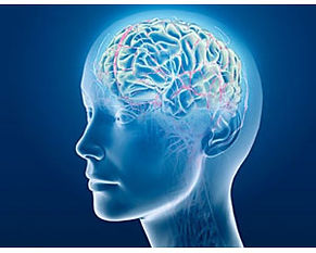 Integrative Psychiatry of Destin, FL - About Dr  Simkin