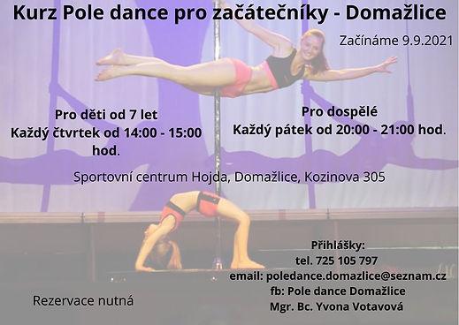Kurz Pole dance Domažlice.jpg