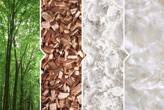 Le Lyocell : une fibre plus écologique .
