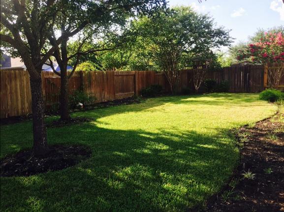 Beautiful backyard layout