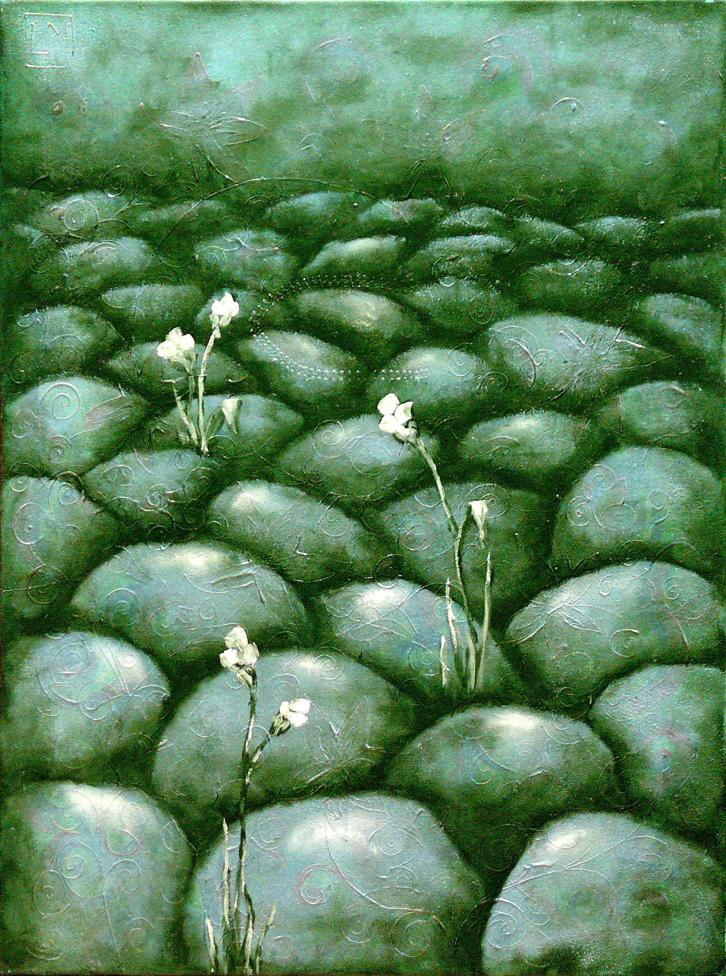 Flowers on the Stones