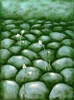 Flowers on the Stones