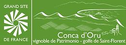 cargrandsitec_conca.png