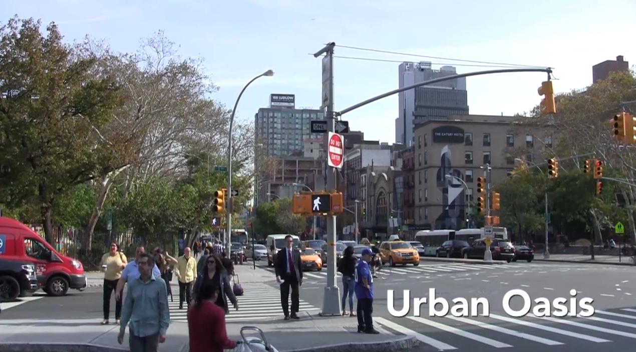 Urban oasis (Video)