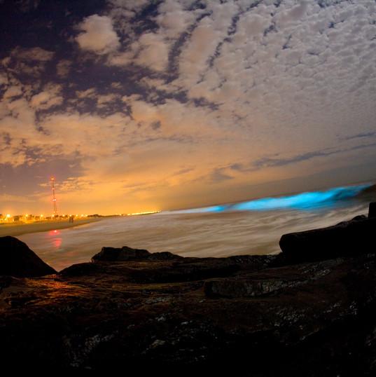 Tasmanian blue glow may hide a deadly secret