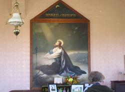 TucsonMar2011 009