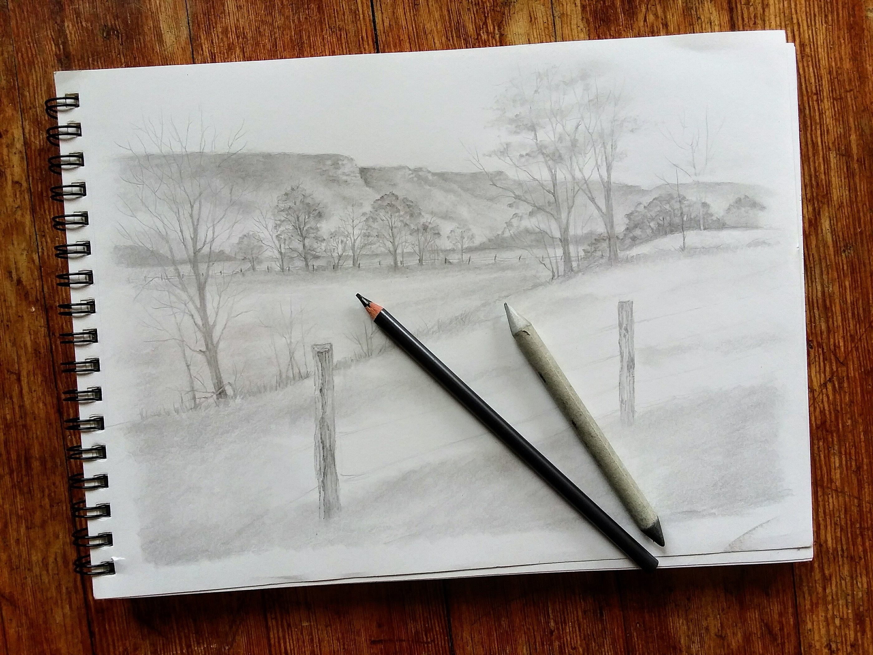 bluff country pencil sketch