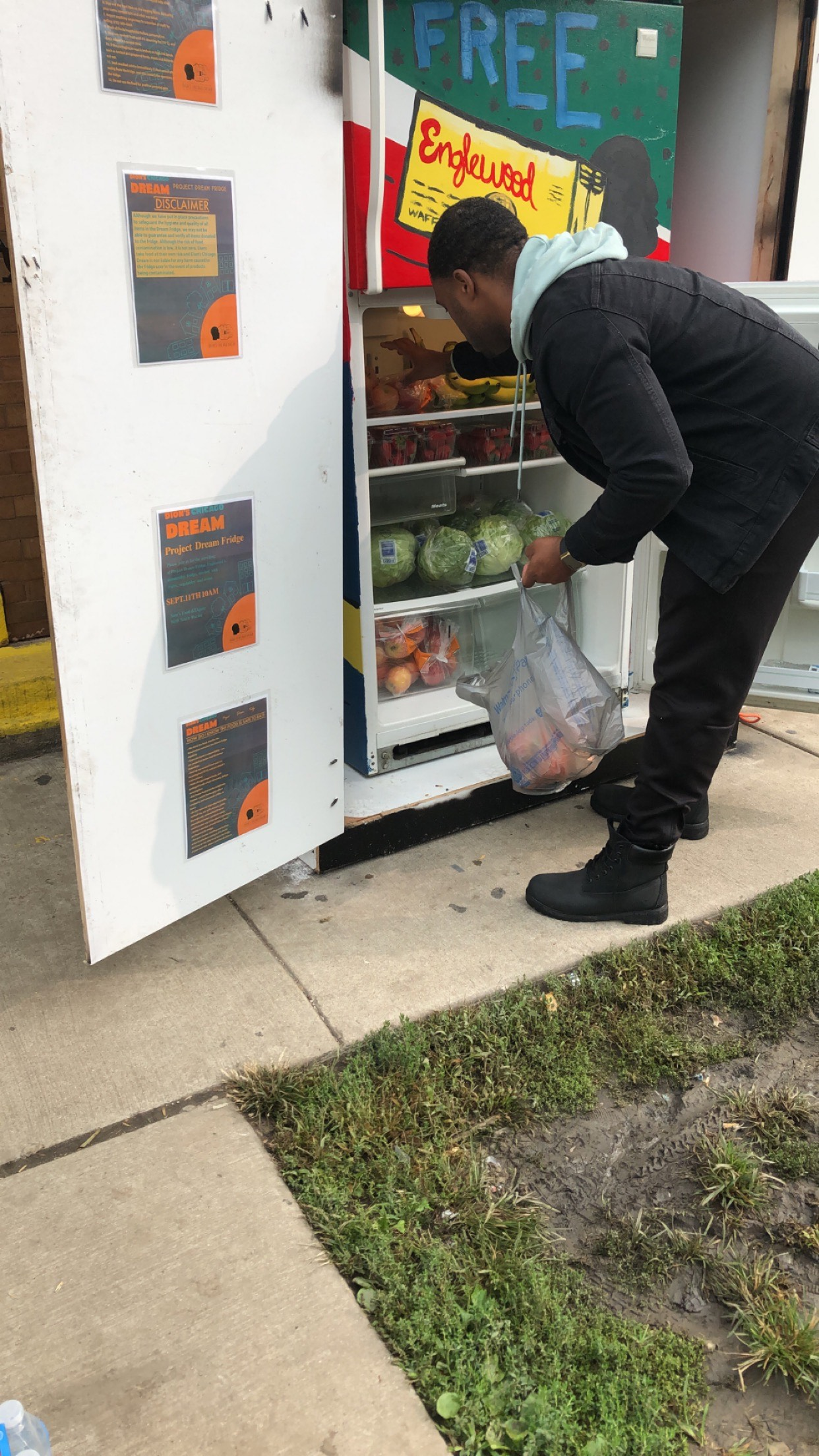 Dion puts apples in fridge