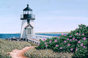 Brant Point w/ Roses