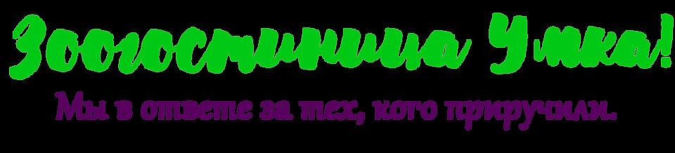 лого 2020 только название.png
