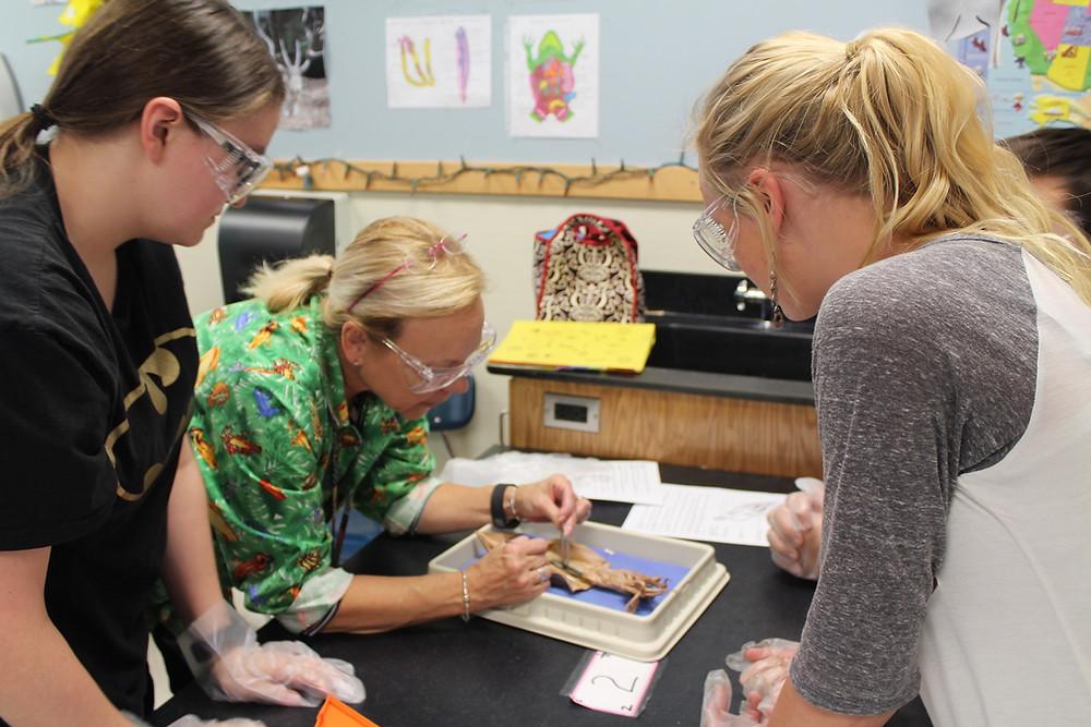 biology tutor NYC, NJ, Brooklyn, online
