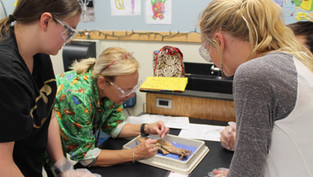Online High School Biology tutoring job