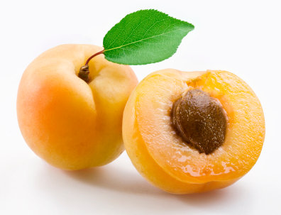 APRICOT (During seasonal months)