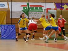Lizenzerteilung 2020/2021 und weitere Vertragsverlängerungen beim HC Leipzig