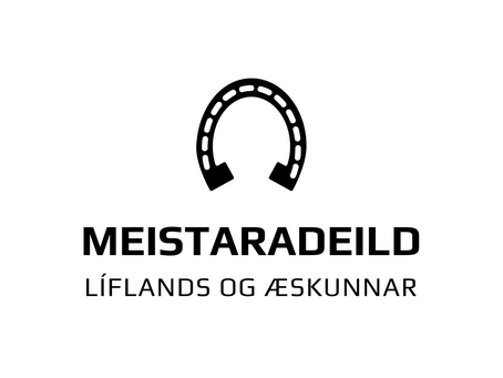 Staðan eftir þrjú mót, 4 greinar