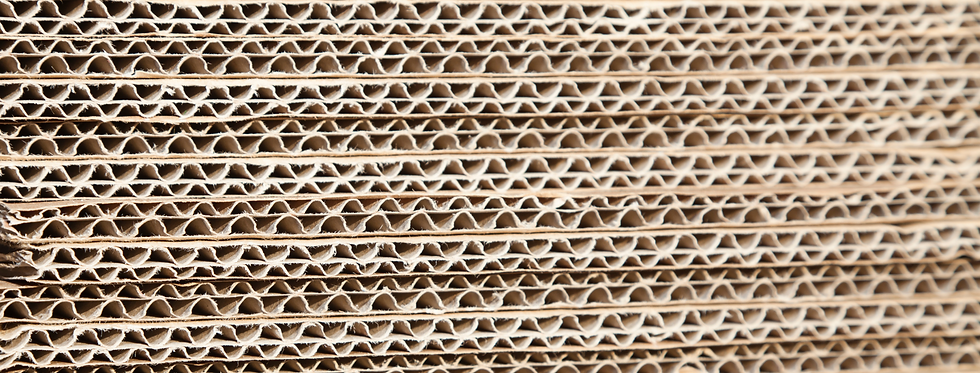 carboard facebook cover.png