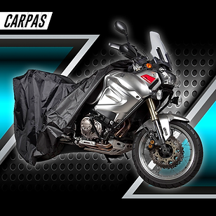 CARPAS.png