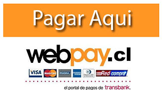 1056300-webpay_pago.jpg