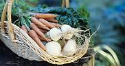 נושא כלים- סלסלות ירקות