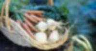 Ernährungsberatung Personaltraining Beratung Coaching gesund Essen Abnehmen Entgiften Entschlacken Joggen Gruppe Gruppenfitness Bewegung Sport Training Muskeln zunehmen Fett reduzieren