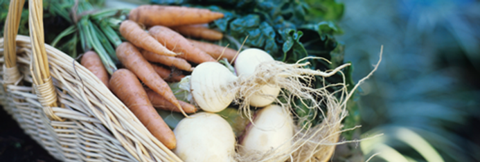UAMS Seasonal CSA Share, May 4-July 20