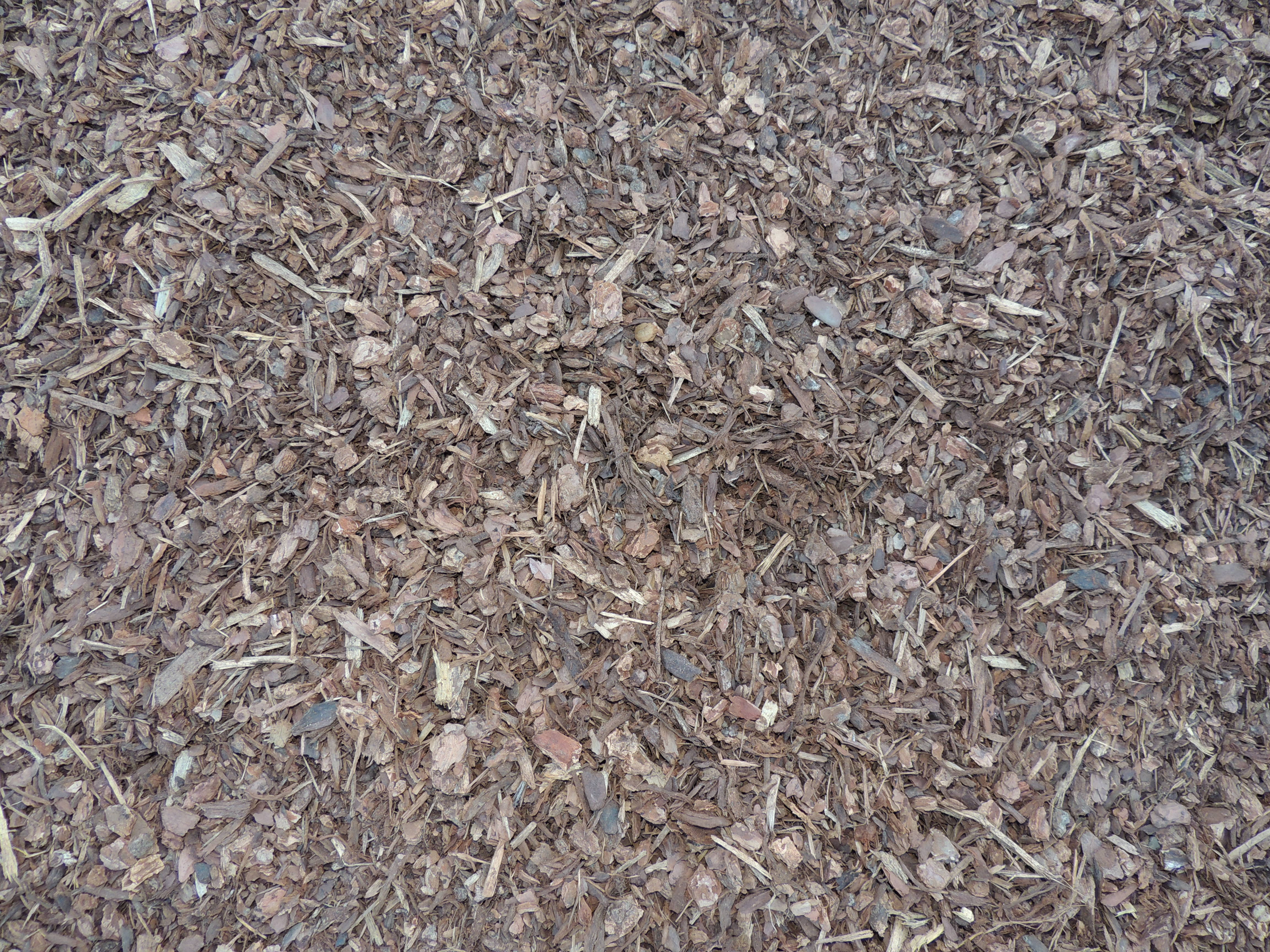 Medium Shredded Bark