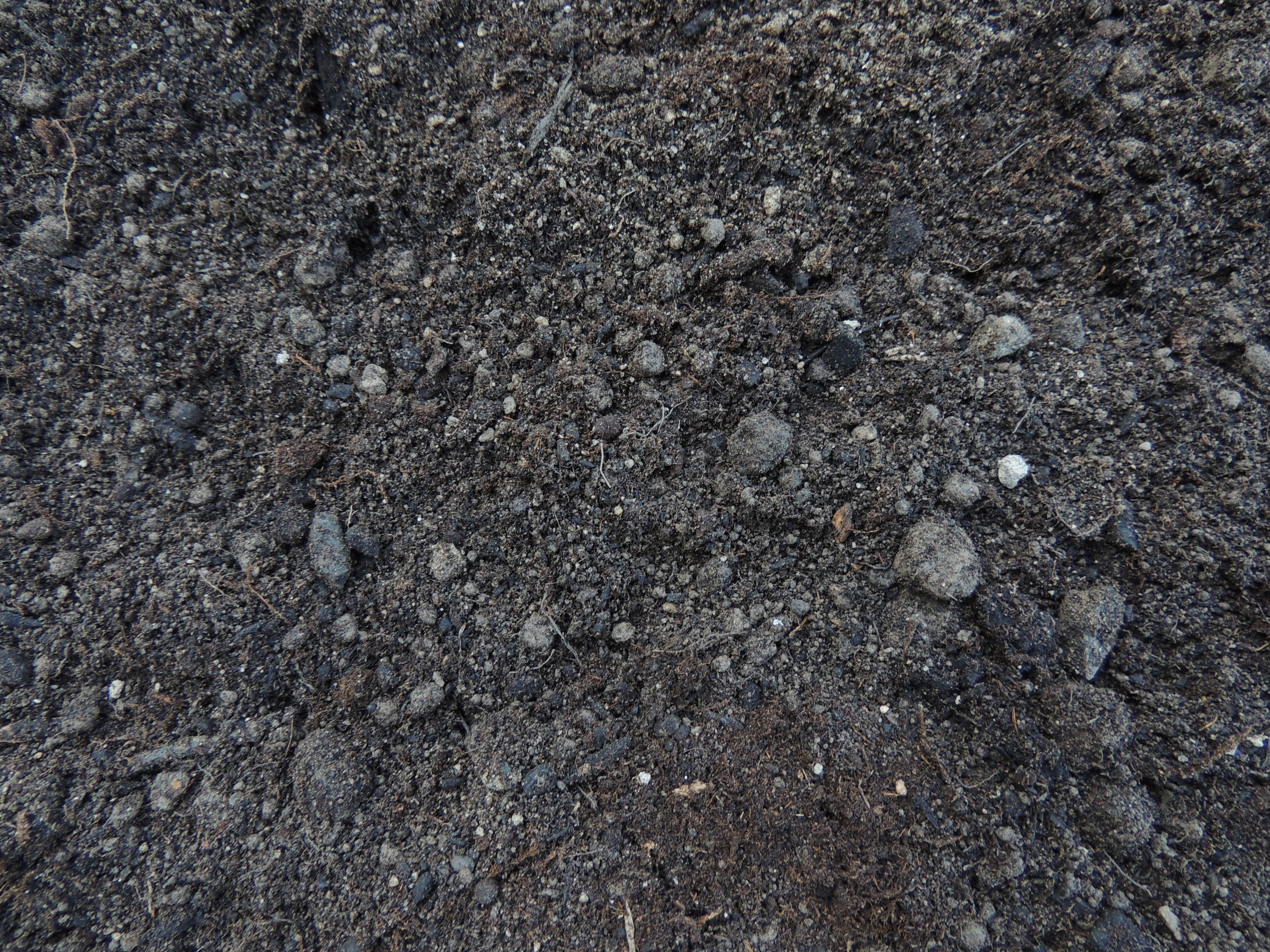 Premium Garden Blend Top Soil