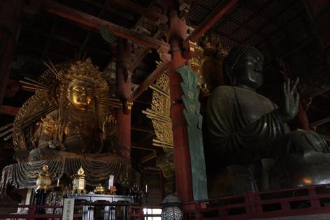Meet Kyoto Todai-ji