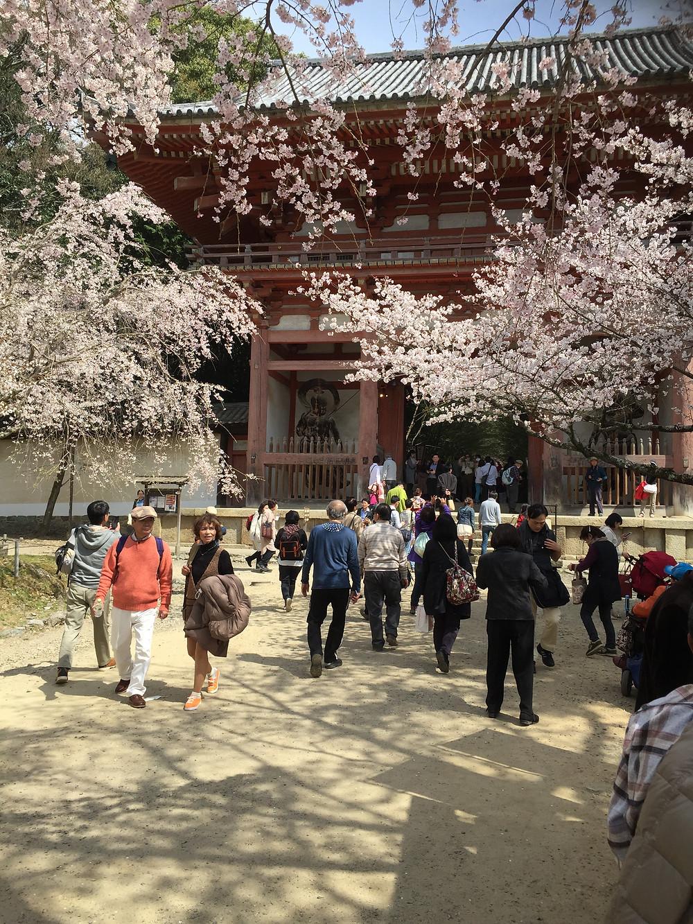 Daigo-ji Tempel Kyoto