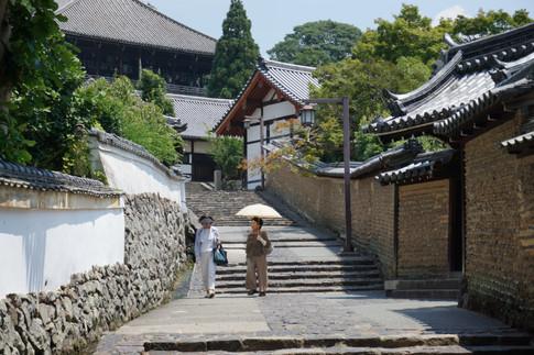 Meet Kyoto in Nara