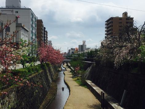 Meet Kyoto Kanal