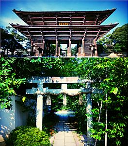 Tempel und Schrein in Japan
