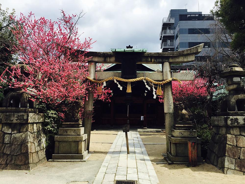 Schinto Schrein Kyoto