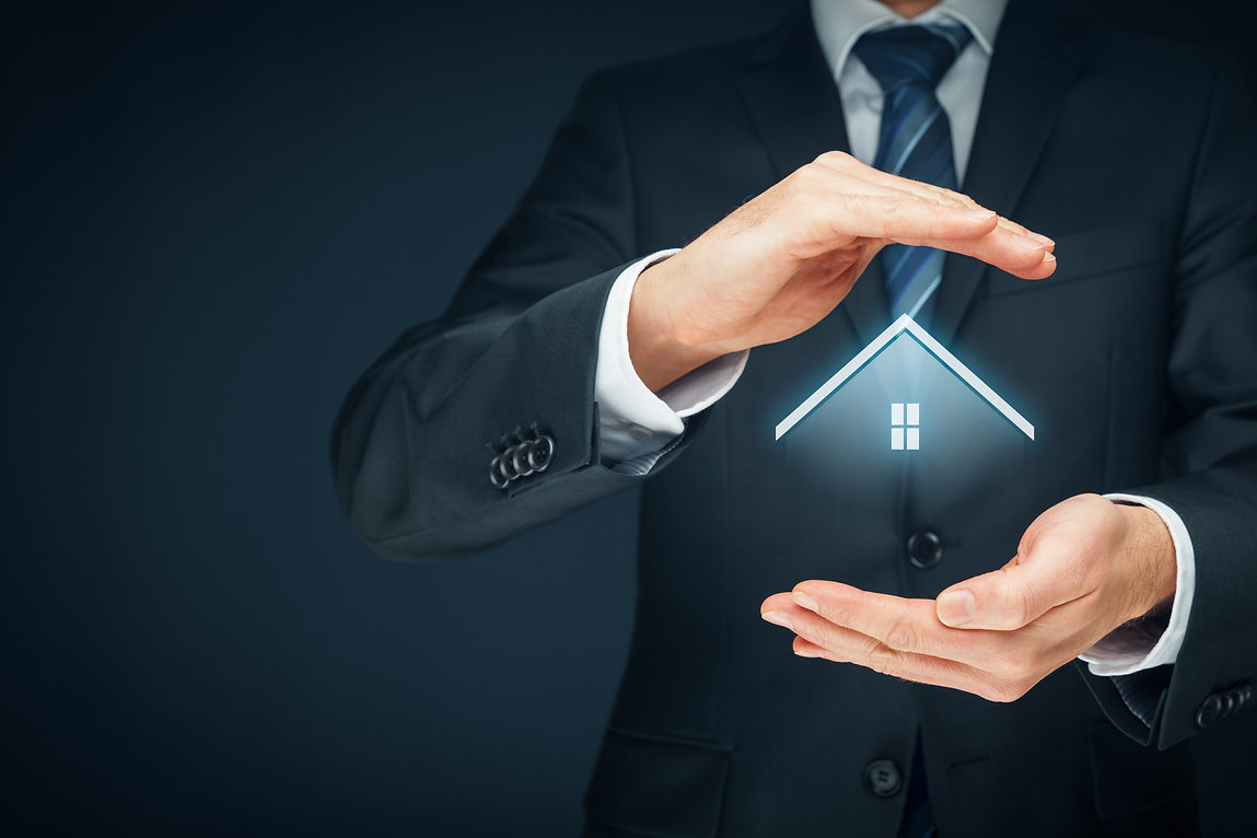 Mortgage Broker showing Home Loan