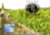 eventF2.jpg