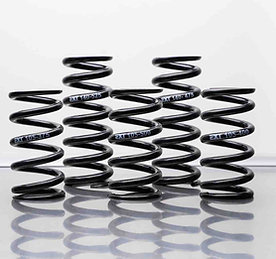 EXT Racing Shox - MTB Shock Spring