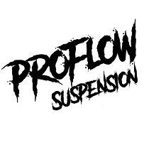 ProFlow Logo 2021 CTW Logo.jpg