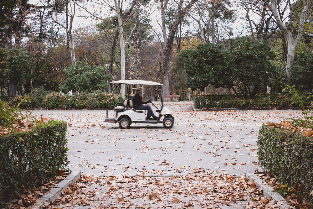 Golf cart driving down leafy road